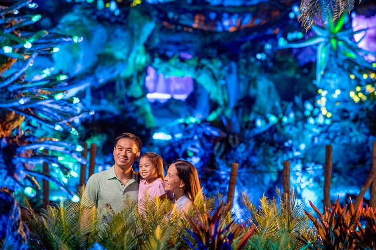 Na'vi River Journey Location; Courtesy Disney