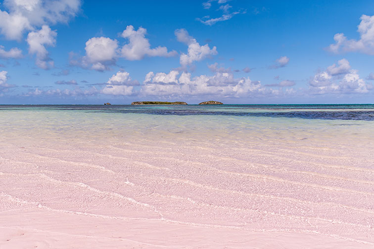 Pink-Sand Beach in Eleuthera, Bahamas
