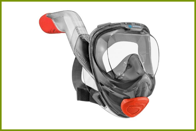 WildHorn full-face snorkeling mask