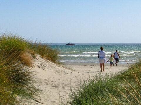 family walking to the beach. sand dunes beach michigan; Courtesy Slniecko/Shutterstock