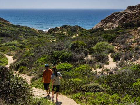 two people walking down steps to torrey pines beach in san diego