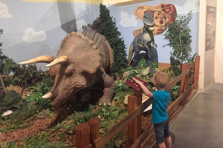 Dinosaur Journey, Western Museums of Colorado; Courtesy Tripadvisor Traveler/PAJeremy