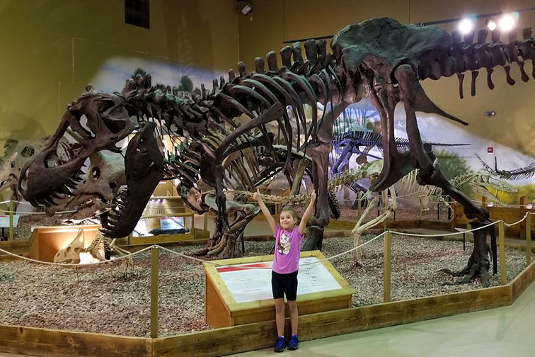 Wyoming Dinosaur Center; Courtesy Tripadvisor Traveler/Gvad the Pilot