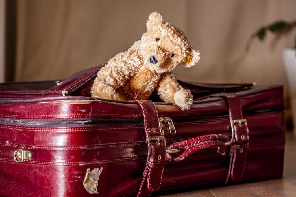 Teddy bear peeking out of suitcase