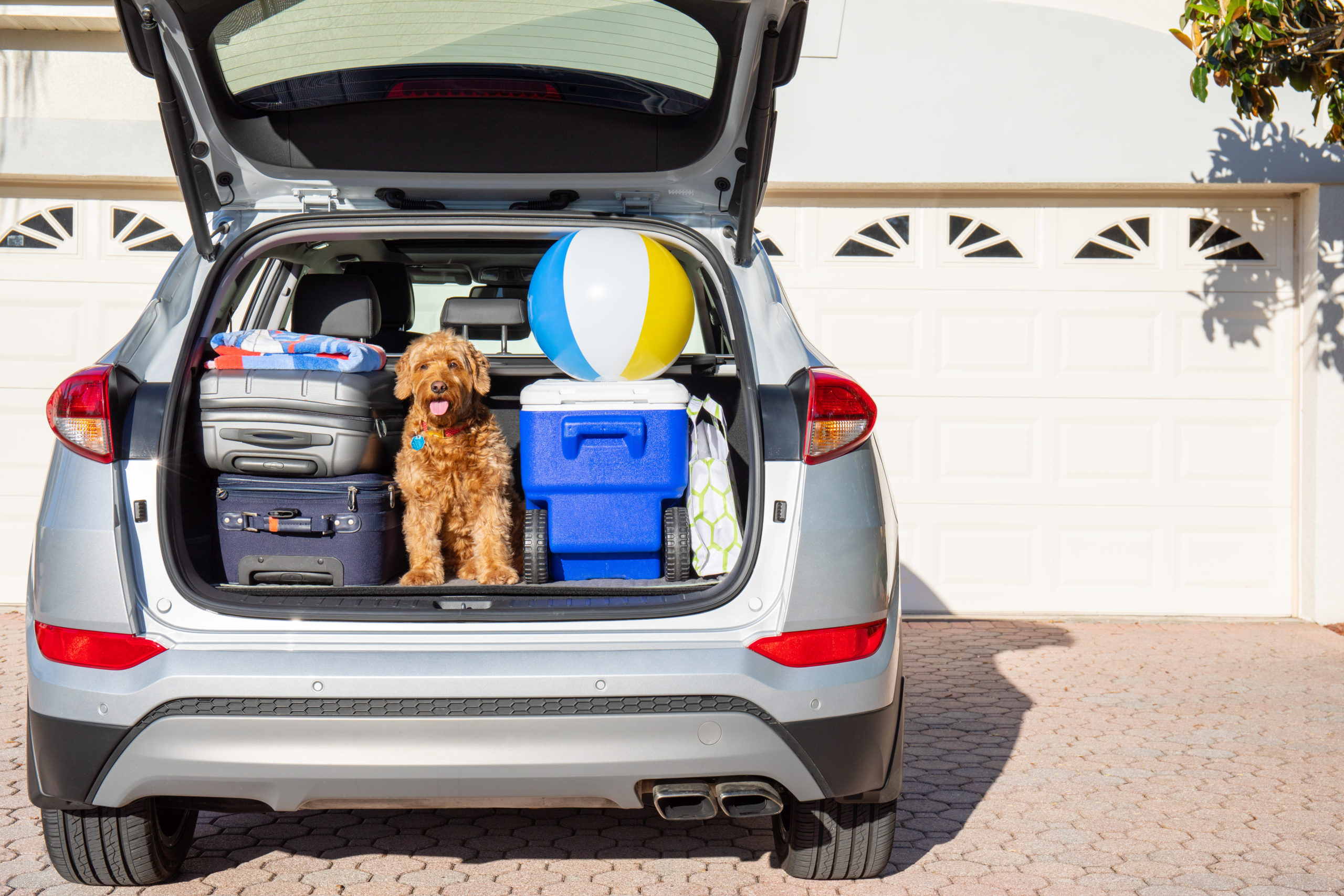 Car packed for family road trip