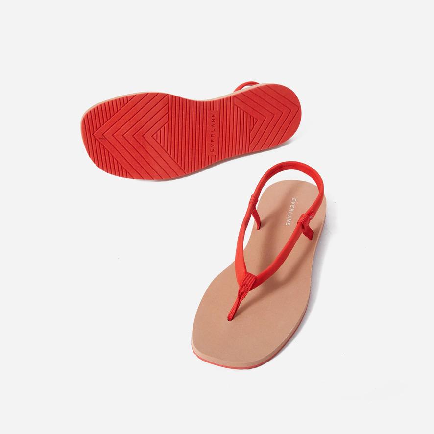 1. Everlane The ReNew Strappy Sandal