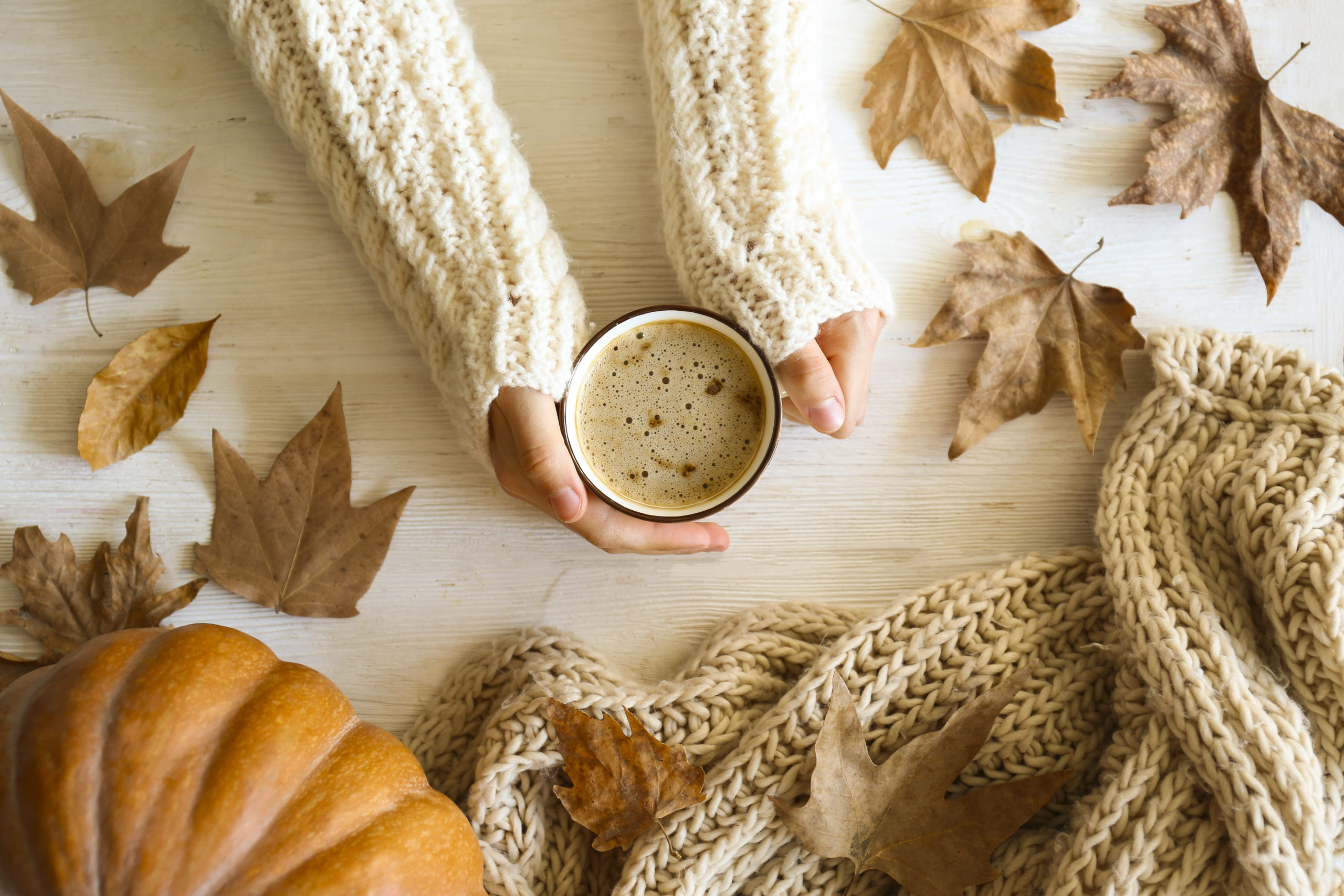 Aerial view of hands in white sweater holding coffee while surrounded by pumpkins and leaves